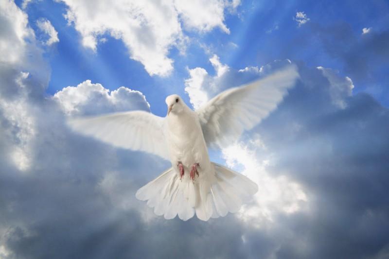 zeslanie ducha - Niedziela  9 czerwca - Uroczystość Zesłania Ducha Świętego